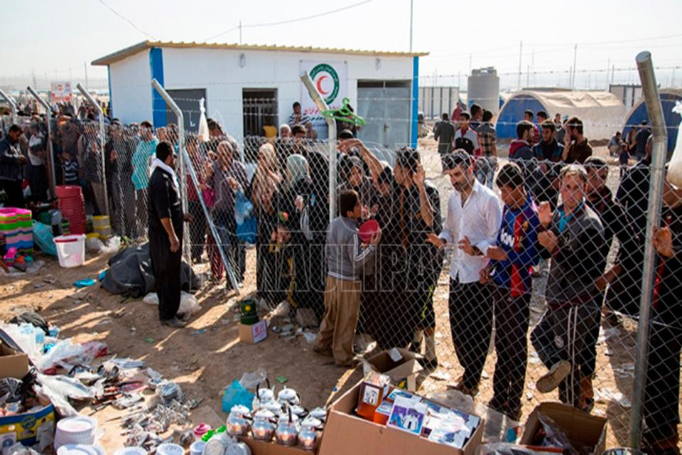 Hoy tamaulipas alcaldesa de roma busca limitar la for Ministerio de migracion