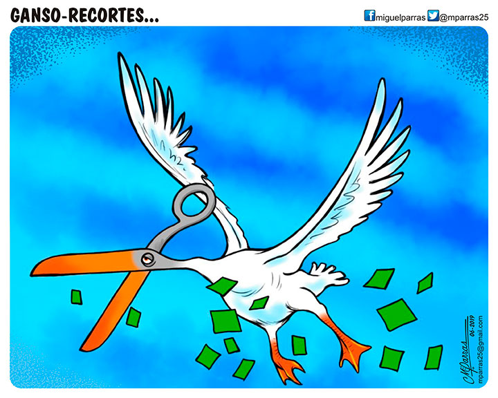 Ganso-Recortes...