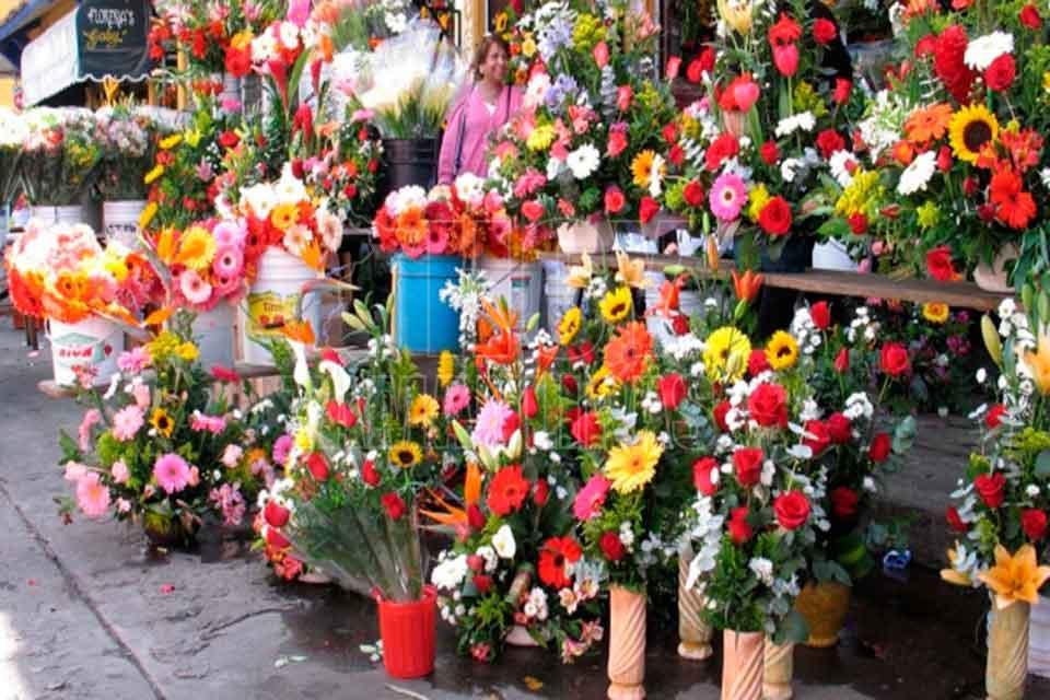 Hoy Tamaulipas Floristas Ofrecen Nuevos Disenios En